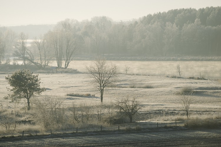 The river in the morning, Poland